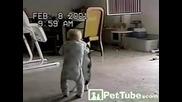 Сладко коте и бебе се борят смях :)