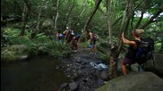 Kauai - The Lost World - Canon 5d Mark Ii - Glidecam Hd 4000