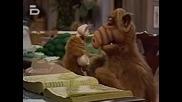 Alf S01e22 - It Isn't Easy ... Bein' Green