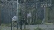 Wikirebels - The Wikileaks Documentary [1/3)