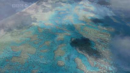 The Pacific Ocean / Тихият океан [hd]