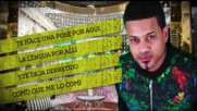 Alexis y Fido ft. Wisin, Don Miguelo, Tony Dize - - A Ti Te Encanta ( Remix Lyric Video )