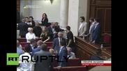 Ukraine: Scuffles break out as Rada passes draft decentralisation law