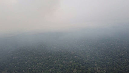 Brazil: Smoke hampers firefighting efforts in Amazon rainforest