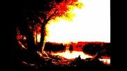 Пол Анка - В райската градина