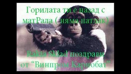 Винпром Карнобат (remake, Chefo, Djimi) - Споко Сандoкане