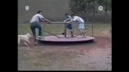 Funny Playground Accidents Afv America's Funniest Home Videos 327