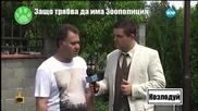 Добрият пример - човек от Козлодуй помага на животни в беда - Господари на ефира (20.07.2015)