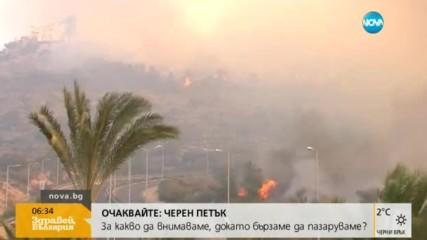 Десетки хиляди евакуирани заради пожари в Израел