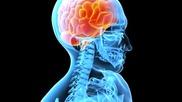Контрол На Съзнанието -- 4
