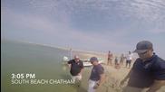Хора спасяват голяма бяла акула, която заседна на пясъка - Част 2