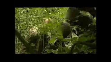 Sas Snipers Training