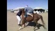 Защо Дебелите Арабки Не Яздят Коне