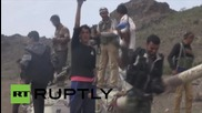 Yemen: Saudi-backed militia fighters take Dalea