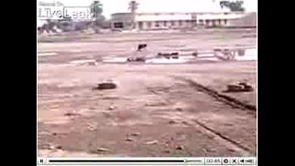 Ранено Куче Върви На 2 Крака В Ирак