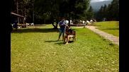 Hacho & Sergio