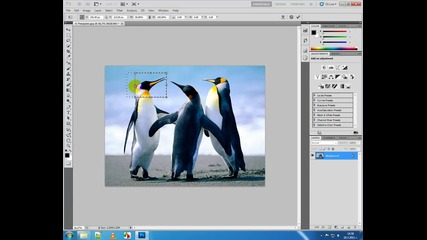 14photoshop rectangle marque tool