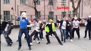 Harlem Shake [school Edition]