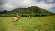 Аз им завиждам а вие? Kualoa Adventure - Oahu Hawaii