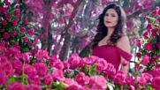 ❤ Foresta Di Rose - Moreza ❤