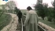 Зелените поля, 1984 г.