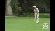 Лисица на голф игрище!