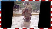 Това може да се види само в Индия #1