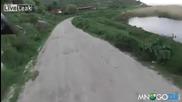 Глутница кучета нападат колоездач