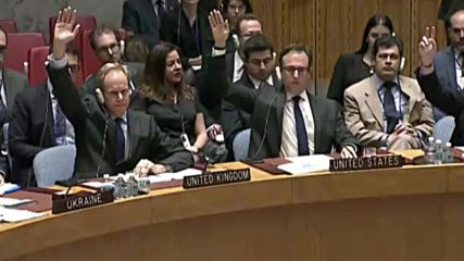 UN: Russia vetoes French-drafted UNSC resolution on Syria