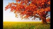* Relax * Milo Greene - Autumn Tree + Текст