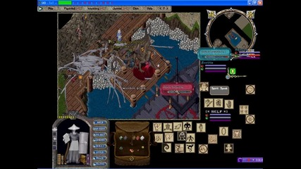 Ultima Online Nw Pirate Champ . Tot & Tedd 06.03.2014