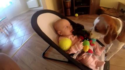 Виновно куче се извинява на бебе, че му е взело играчката