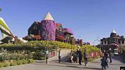 Нежная Лечебная Музыка Успокоит Вас! Красота парка цветов в Дубае!