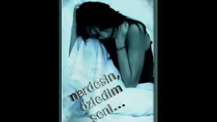 Sinan Yilmaz - acilarla Dolu (sгјper Damar).avi