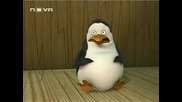 Пингвините от Мадагаскар - Епизод 2 »» Бг Аудио ««