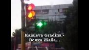 Kaisieva Gradina - Всяка жаба ( qvkata Dlg remix )