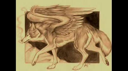 Вълк Ангел
