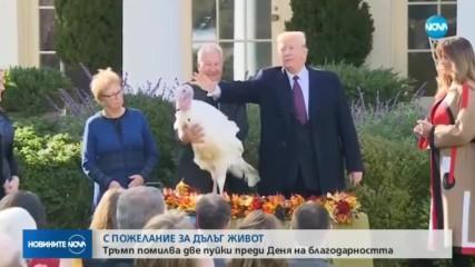 Доналд Тръмп помилва две пуйки според традицията за Деня на благодарността