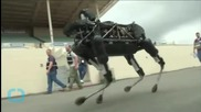 Darpa: These Robots Will Save Your Life (once They Learn to Walk)