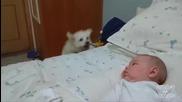 Малко кученце подскача покрай бебето