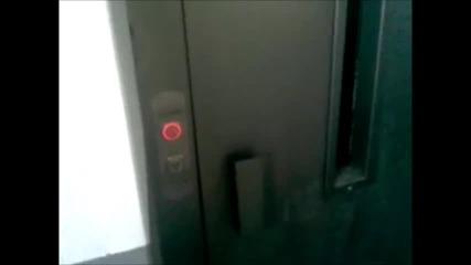 Elevator madness trailer