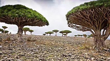 10 изумителни места на Земята