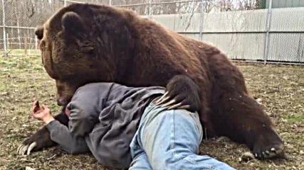Мечка прегръща човек (ВИДЕО)