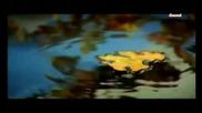 Gotthard - Still I belong to you (превод)