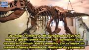 Klasik ve En Eski 10 Dinozor Turu Tr Dublaj Belgesel Film Yonetmen 2017 Hd