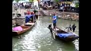 Дресирани корморани ловят риба в реката!