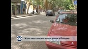 Жълт пясък посипа коли и улици в Пловдив
