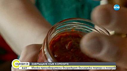 Как малки производители възраждат български продукти?