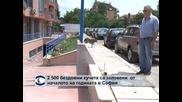 2 500 бездомни кучета са заловени от началото на годината в София