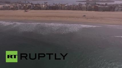 Спасителите в Калифорния изпозват дрон, за да наблюдават акулите около Сийл бийч